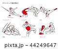 オリンピック競技種目 44249647