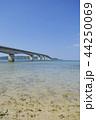 古宇利大橋 夏 古宇利島の写真 44250069