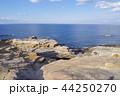 千畳敷 景勝海岸 海の写真 44250270