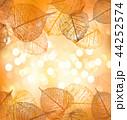 あき 秋 リーフのイラスト 44252574
