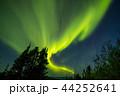 オーロラ アラスカ 極光の写真 44252641