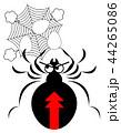 セアカゴケグモのイラスト 44265086