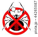 セアカゴケグモのイラスト 44265087
