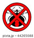 セアカゴケグモのイラスト 44265088