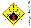 セアカゴケグモのイラスト 44265092