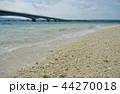 海 青 快晴の写真 44270018