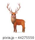 しか シカ 鹿のイラスト 44275550