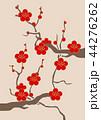 紅梅 梅 梅の花のイラスト 44276262