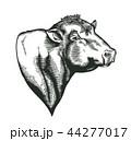 雄牛 農園 農場のイラスト 44277017