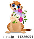 Meerkat with a bouquet of flowers isolated on white background. Vector cartoon close-up illustration 44286054
