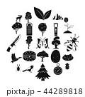ワイルド 自然 アイコンのイラスト 44289818