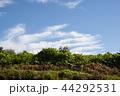 雲 空 青空の写真 44292531