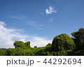 青空 雲 空の写真 44292694