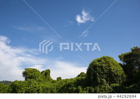 青空 雲 44292694