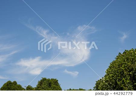 青空 雲 44292779