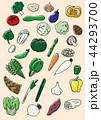 アイコン セット 植物のイラスト 44293700