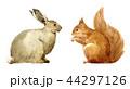 うさぎ ウサギ 兎のイラスト 44297126
