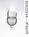 放散虫 プランクトン 微生物の写真 44303008