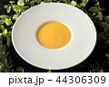 スープ Typical delicious soup 44306309