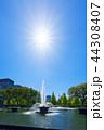 和田倉噴水公園 公園 新緑の写真 44308407