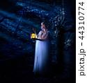 Elf girl in night forest version 44310774