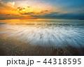 背景 ビーチ 浜辺の写真 44318595