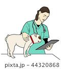 獣医と犬 44320868