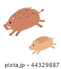 亥 年賀状素材 猪のイラスト 44329887