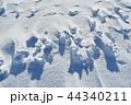 雪原の紋様 44340211