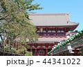 宝蔵門 浅草寺 寺の写真 44341022