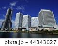 横浜 風景 みなとみらいの写真 44343027