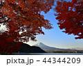 風景 秋 紅葉の写真 44344209