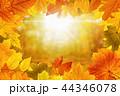 秋 背景 きれいの写真 44346078