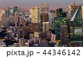 Tokyo city central business downtown 44346142