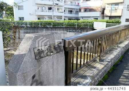 高田馬場分水路 神田川 東京 新宿 44351743