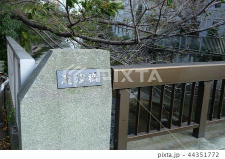 瀧澤橋 神田川 東京都  44351772