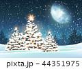 クリスマス 樹木 樹のイラスト 44351975