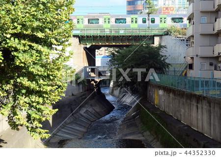 神田川 東京都新宿区  44352330