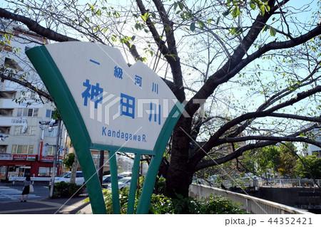 神田川 東京  44352421