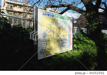 神田川 いきいきウォーク新宿のご案内 看板 44352502
