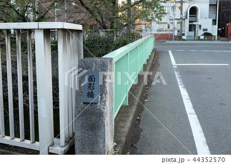 面影橋 神田川 東京 44352570