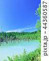 青空 夏 池の写真 44360587