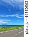 北海道 青空のオロロンライン 44360592