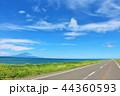 北海道 青空のオロロンライン 44360593