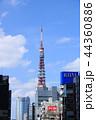 東京タワー タワー 電波塔の写真 44360886