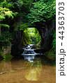 濃溝の滝 風景 滝の写真 44363703