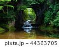 濃溝の滝 風景 滝の写真 44363705