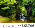 濃溝の滝 風景 滝の写真 44363706