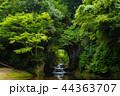 濃溝の滝 風景 滝の写真 44363707