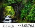濃溝の滝 風景 滝の写真 44363708